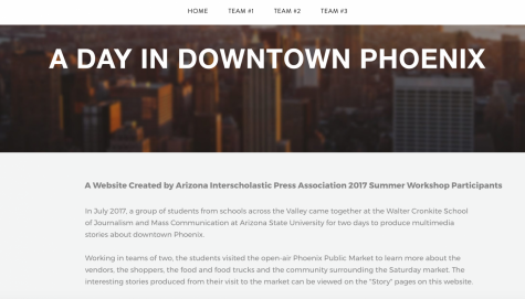 AIPA Summer Workshop Participants Go Live